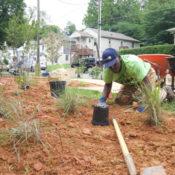 Fauquier Habitat goes native around Haiti house