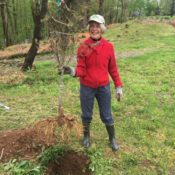 Bonnie Beers planting at Rappahannock County Park