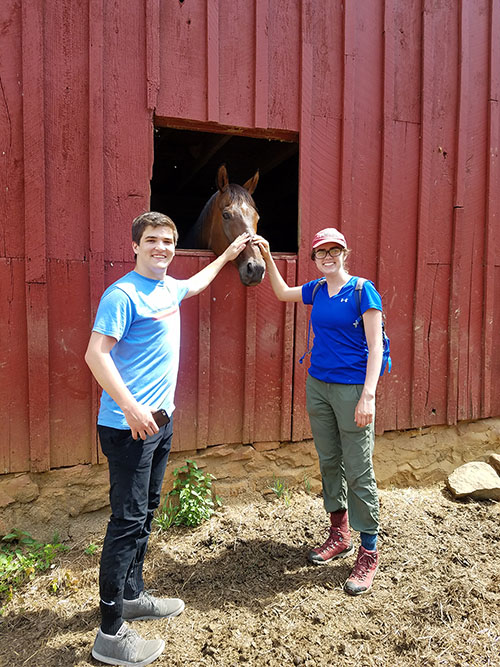 Young people visit a farm in Hamilton