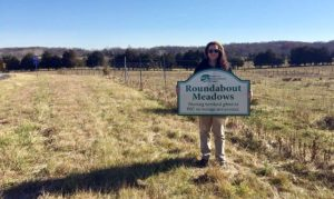 Roundabout Meadows sign in front of a meadow
