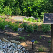 larson native plant garden sign