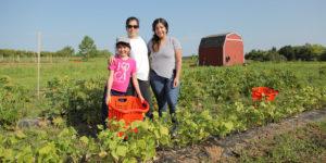 volunteers at the farm