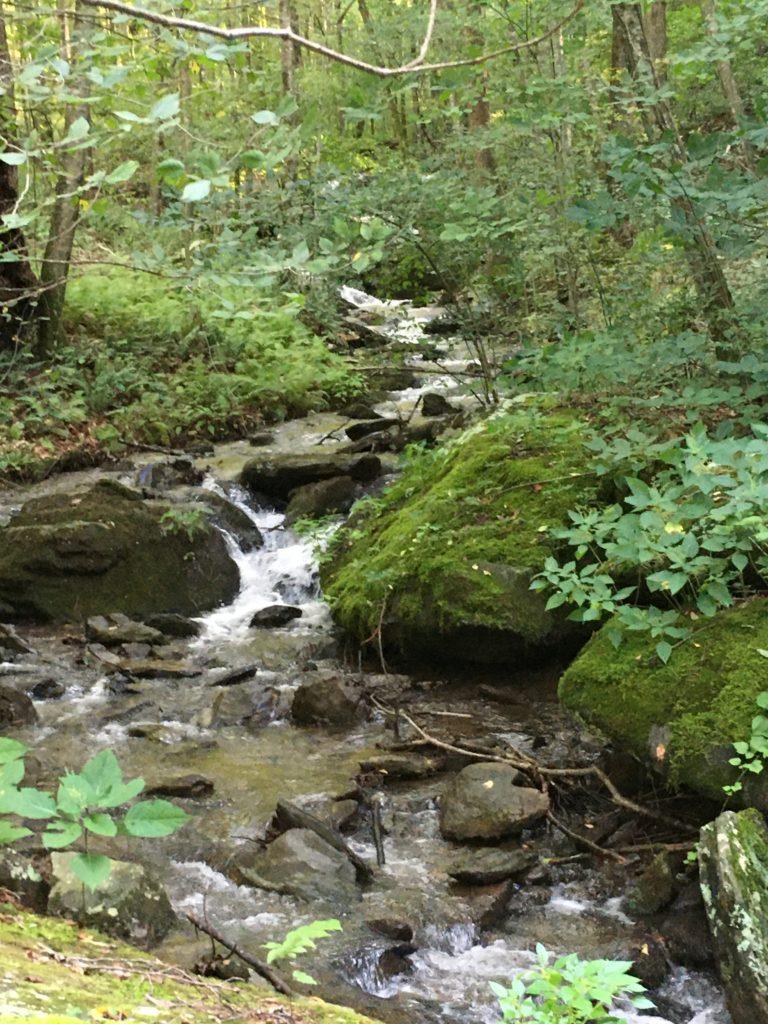 Puppy Run cascades through the Gilges property toward Moormans River