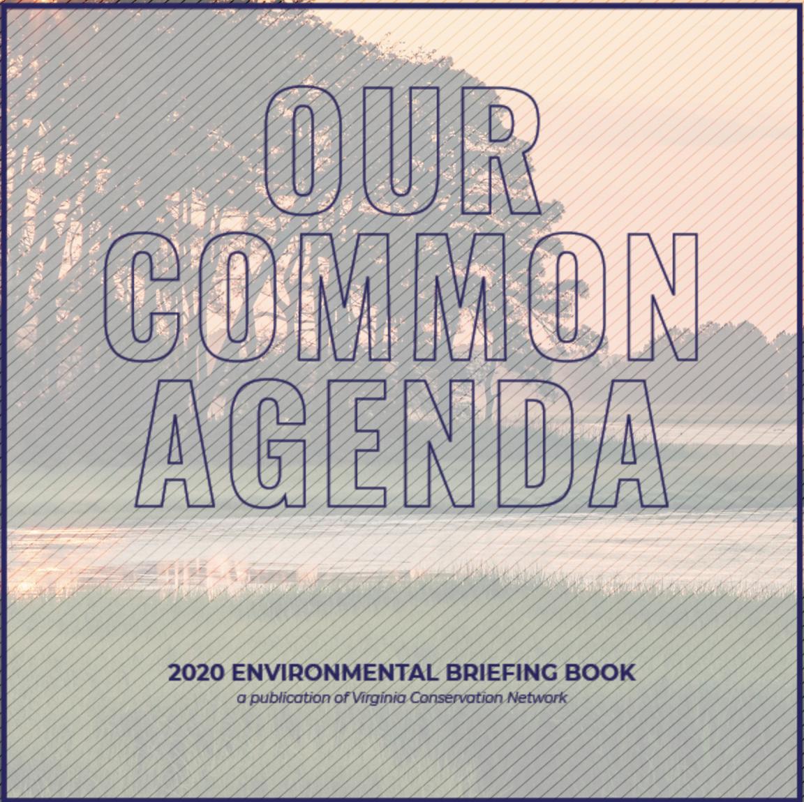 Our Common Agenda.
