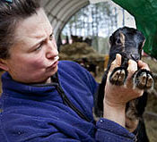 Gail and baby goat