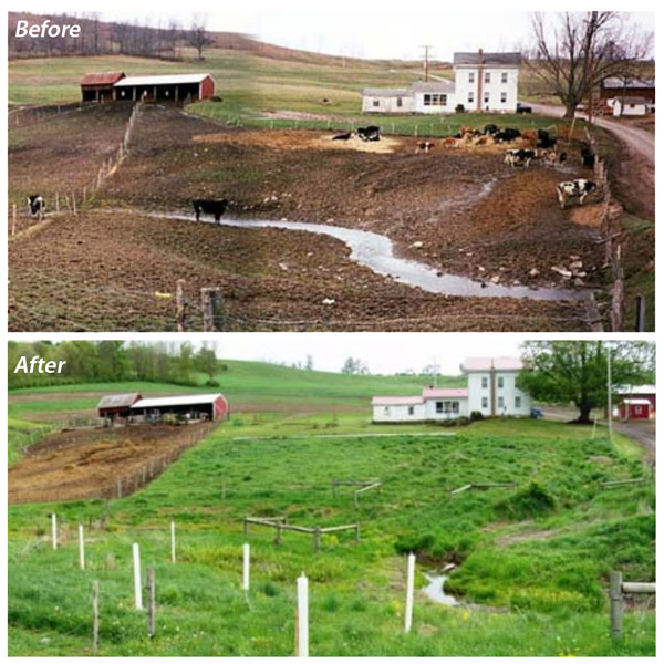 ag bmps before and after