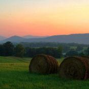 Farm bales