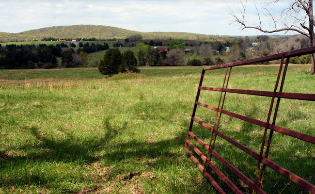 The fence to Roundabout Meadows Farm.