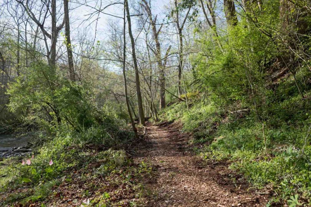 new trail section