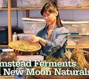 Farmstead Ferments & New Moon Naturals