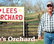 Lee's Orchard