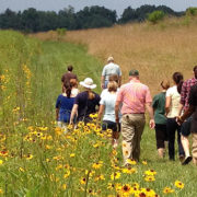PEC Fellows walk in a field