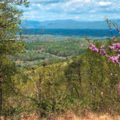 Historic Preservation Intern - Southwest Mountains Rural Historic District