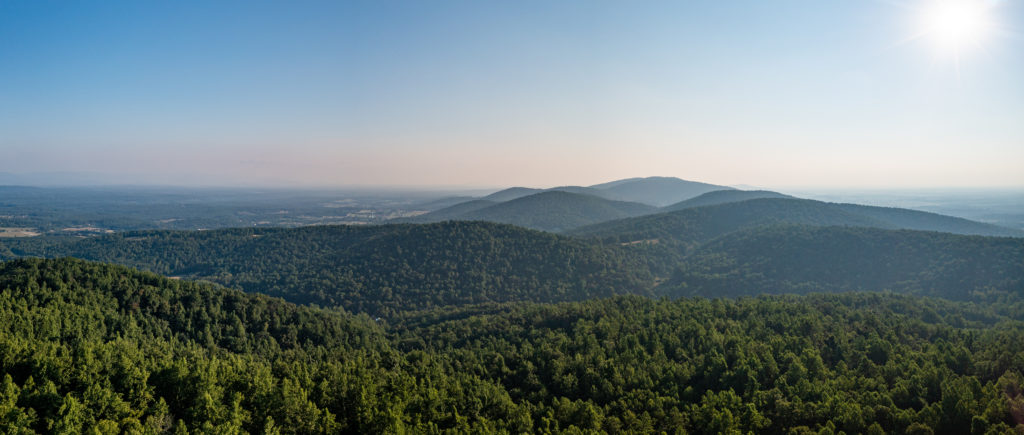 Briefing Paper: Resources for Climate Action Planning in Albemarle County