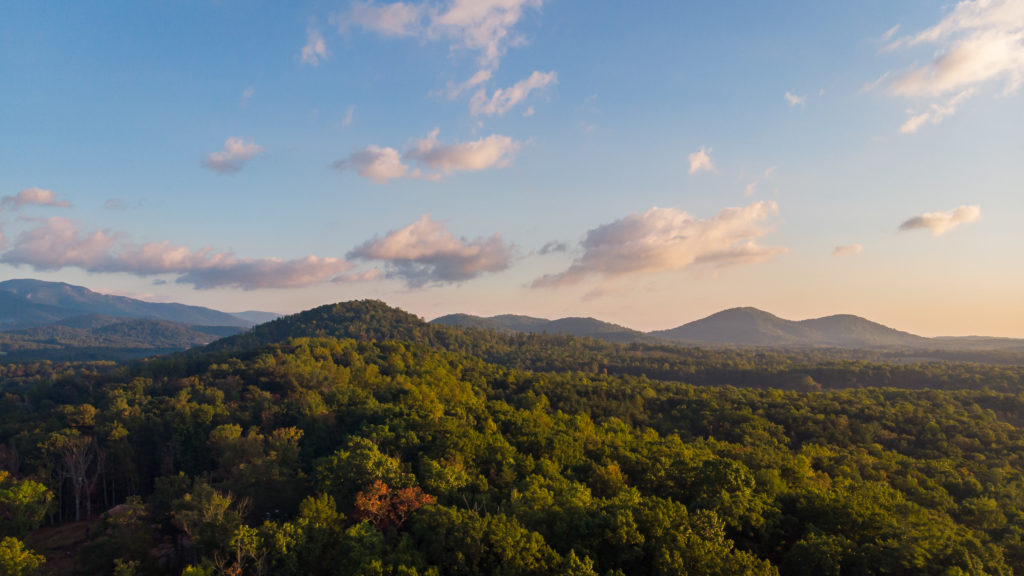 Survey of Virginia Voters Shows Overwhelming Support for Increased, Dedicated Investments in Conservation