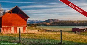 red barn farmland photo by patricia temples