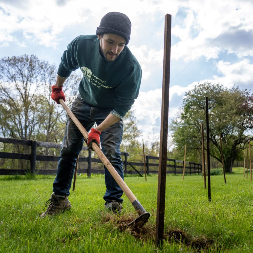 Video: Meadows Farm Tree Planting